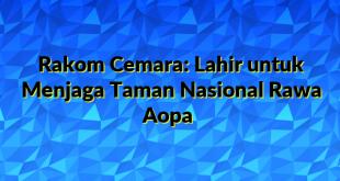 Rakom Cemara: Lahir untuk Menjaga Taman Nasional Rawa Aopa